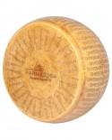 Forma Intera Parmigiano Reggiano DOP Parma 2064 stag.36 mesi - 36-38 Kg - Parma 2064