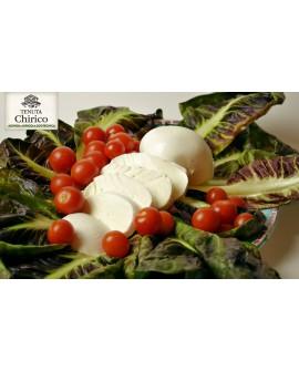 Mozzarella di latte di bufala 100% 250 g Caseificio Chirico