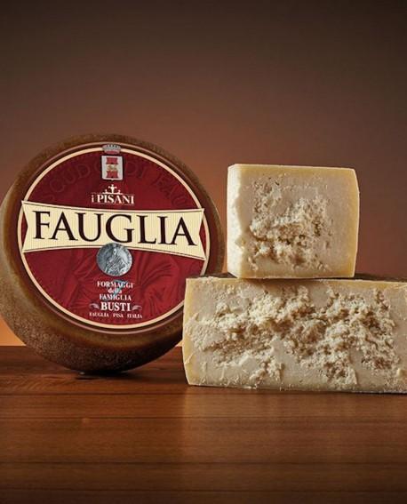 Pecorino fauglia 7,8-8,0 kg  - Caseificio Busti