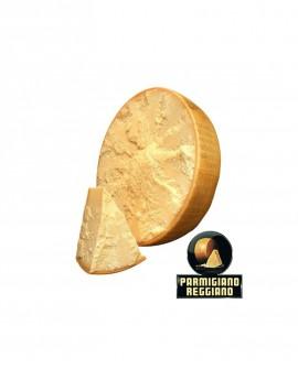1/2 Forma SV taglio orizzontale Parmigiano Reggiano DOP classico mezzano rigato 13mesi - 18-19 kg - Montanari & Gruzza
