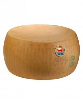 Forma intera Parmigiano Reggiano Vacche Rosse 22 mesi - 36-38 kg - Montanari & Gruzza