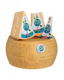 Forma intera ESSENZA ITALIANA formaggio duro italiano con caglio vegetale 14mesi - 36-38kg  - Montanari & Gruzza