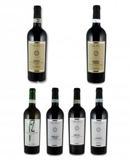 Degustazione Grandi Vini Piemontesi Villa Penna - 24 bottiglie