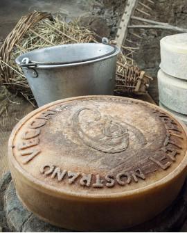 Nostrano Vecchia Latteria di montagna latte crudo 9kg stagionatura 90gg - Gildo Formaggi
