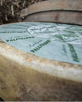 Valligiano di montagna latteria tenero meta 3kg stagionatura 30gg - Gildo Formaggi