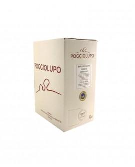 BAG-IN-BOX Umbria Bianco IGP - vino bianco 5 lt - Cantina PoggioLupo