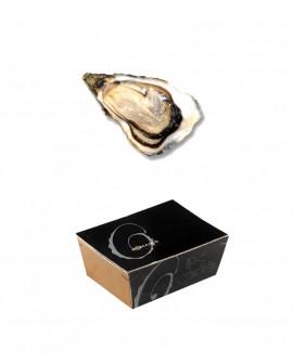 Ostriche della Bretagna del Sud - AUGUSTUS - confezione 2kg - 20-22 pezzi - Roman's F.lli Manno