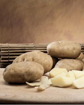 Patata bianca dei Colli Viterbesi - sacco rete 10Kg - Perle della Tuscia