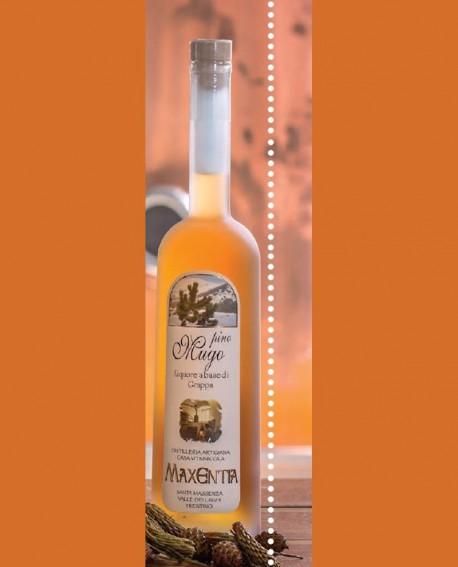 Liquore alla frutta Pino Mugo 700 ml - Maxentia