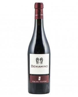Beniamino IGP aglianico, vino rosso 8-10 mesi in barrique - bottiglia 0,75 lt - Cantina Vini Placido Volpone