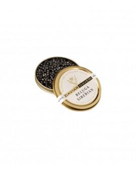 Caviale Beluga Siberian - 15g - cartone nr.6 pezzi - Caviar Giaveri
