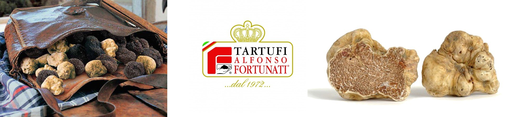Tartufo fresco - vendita online